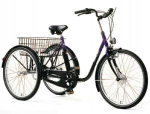 haverich-velo-3roues-adulte-28p_a6
